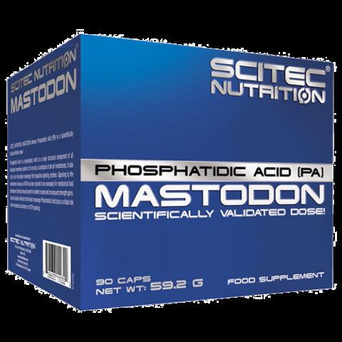 Scitec Nutrition - Mastodon